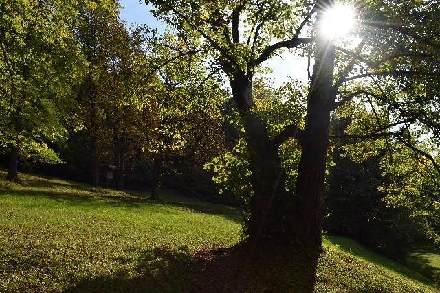 Park vo Svätom Antone